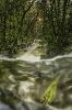 Río da Fervenza ao seu paso por San Martiño de Callobre.