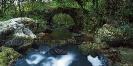 Acueducto da presa de Leira.